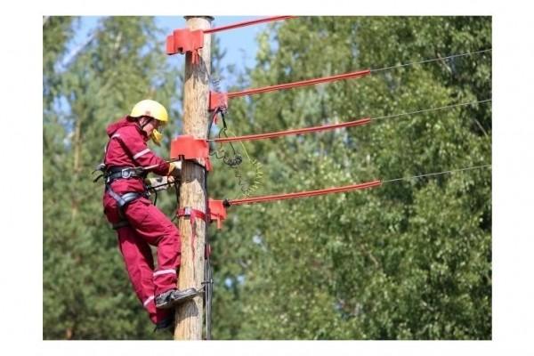 sadales-tikls-elektrozinas-84-47064413